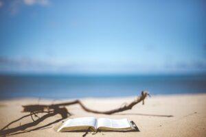 積ん読、読ん読